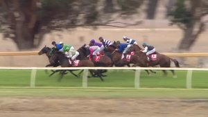 Morphettville Parks: Morphettville | Thoroughbred Racing SA