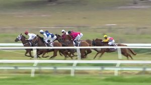 Naracoorte: Naracoorte | Thoroughbred Racing SA